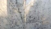 Frost draws on glass patterns