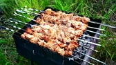 rack focus : grilled meat pieces on the grill