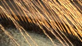 spurt : Thin jets water of fountain fly up in the rays of sunset. HD slowmotion x4