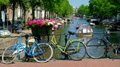 Amsterdam canal and flowers Stok Video