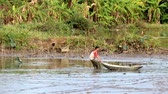 november : Fishermen fishing in the lagoon Asian on November 20, 2013 in asia Stock Footage
