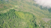 madeira : Aerial View of the Mountain Forest, Island Madeira Portugal Stock Footage