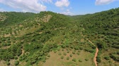 color : 4k Aerial footage with a high view of the Greek countryside Stock Footage