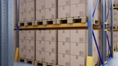 vidlice : Closeup of large metal racks and shelves, pallets with cardboard boxes in modern warehouse. Loopable 60 fps animation.