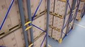 Top view on large metal shelves with cardboard boxes in modern warehouse. Loopable 60 fps animation Vídeos