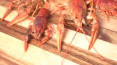 nutritious : Cooked red crawfish