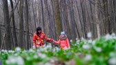 kar taneciği : Mother and daughter are walking through the spring forest full of snowdrops , in sunny rays Stok Video