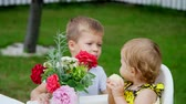 family values : summer, in the garden. the four-year-old boy gives a bouquet of flowers to his younger one-year-old sister, brother kisses her sister on the cheek. The girl eats an apple