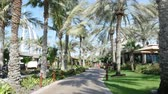 exclusivo : DUBAI, UNITED ARAB EMIRATES, UAE - NOVEMBER 20, 2017: Hotel Jumeirah Al Qasr Madinat , walk along the beach zone, throught the teritity of the hotel