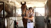 koňmo : in the stable, a female rider in riding clothes ties a brown young handsome horse, a thoroughbred stallion