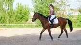 dressage : summer, outdoors, girl rider, jockey riding on a thoroughbred beautiful brown stallion, horse, on the training ground Stock Footage