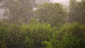 junção : view from above, city park , spring day, thunderstorm in city, strong wind and rain, a downpour with hail. focus on big drops of rain, strong gusts of the wind