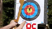 flechette : An outdoor target for shooting with a bow and arrows, for archery arrows on a summer day , in the Park. Archery target , Hit the goal. target board and arrow shoot. Vidéos Libres De Droits