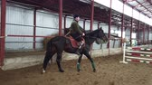 cadeira de rodas : in special hangar, a young disabled man learns to ride a black, thoroughbred horse, hippotherapy. man has an artificial limb instead of his right leg. concept of rehabilitation of disabled with animals.