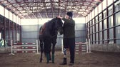 hipopótamo : in special hangar, a disabled man jockey strokes a muzzle of a thoroughbred, black horse. man has prosthesis instead of his right leg. he learns to ride horse, hippotherapy. friendship of man, horse Stock Footage