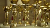 honra : Golden goblets. Champion Achivements. Stock Footage