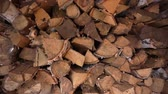 FireWood in the woodpile. Close up.