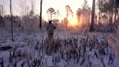 Hunters in the Woods. Armed Rangers in winter forest