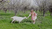 blondehair : Blonde in pink dress feeds the grass a goat Stock Footage