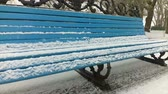 solitaire : Bench in the park, it is snowing. Slow Motion. Stock Footage