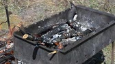 charbroiled : Fire in a brazier Stock Footage