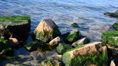 gulf : Water and stones Stock Footage