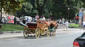 wagons : LVIV, UKRAINE - JULY 10, 2014: Walk on horses.