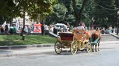 lviv : LVIV, UKRAINE - JULY 10, 2014: Lviv tourist city. Walk on horses.