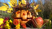 koçan : Spooky halloween pumpkin. The monster sits on a tree stub. Shooting in October. Stok Video