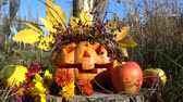 кошмар : Spooky halloween pumpkin. The monster sits on a tree stub. Shooting in October. Стоковые видеозаписи