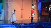klassischer tanz : The Nutcracker. Childrens show.