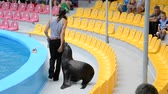 холеный : Performance of seals in a dolphinarium.