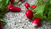 radis : Falling of fruits of a radish. Slow motion.