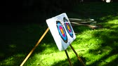 tiro al bersaglio : Archery The arrow hit the target. Slow motion.