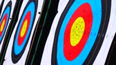 tiro al bersaglio : Targets for archery. Shooting in the summer.
