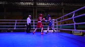 打撃 : LVIV, UKRAINE - DECEMBER 4, 2019: Ukrainian Youth Boxing Championships.