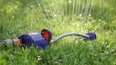 nature close up : Lawn sprinkler spaying water over green grass. Stock Footage