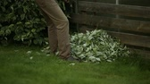 ancinho : Gardener cleans cropped leaves with rake Stock Footage