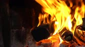 firebrand : bright flame of a bonfire. include Crackle of firewood noise