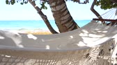 Hammock at the beach on a sunny day on caribean to Iceland Stock Footage