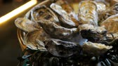 clams : Still-life of fresh oysters on ice lies on a plate in a luxury restaurant Stock Footage