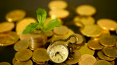 tax time : Management efficiency, time is money. Vintage pocket watch with golden coins stack and green leaf, black background. Time for Success of Finance Business. Investment, business financial ideas concept Stock Footage