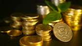 borç : Golden coins and green leaf of sprout on black background. Success of finance business, mortgage and real estate investment, retirement, saving plan for loan, deposit, wealth, banking concepts.