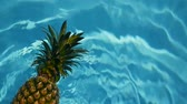 ananás : Pineapple Floating In blue Water In Swimming Pool. Healthy Raw Organic Food. Juicy Fruit. Vegetarian, Vegan Nutrition, Vitamins, Diet, summer holidays, vacation concepts. Exotic tropical background Stock Footage