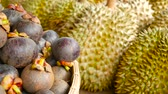 comestível : Mixed season tropical sweet juicy Fruits, local Thailand market. Large Monthong Durian, hard skin covered in sharp points and Mangosteen, King and Queen, most delicious antioxidant fresh exotic fruits