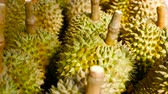 thorny : Asian king of fruits Durian is on the counter in the night market in Thailand. Durians are very large and the price is expensive. Exotic tropical fruit with green and prickly flesh has unusual taste.