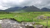 wild : view to river and hills at connemara in ireland  37 Stock Footage