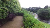 irlandês : view from platform with bench to river in ireland  7