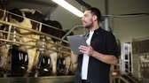 stodola : young man with tablet pc and cows on dairy farm