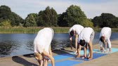 instrutor : group of people making yoga exercises outdoors Stock Footage